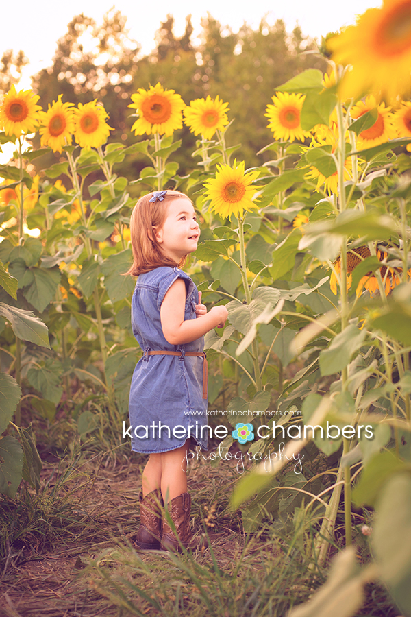 www.katherinechambers.com, Katherine Chambers Photography, Cleveland Family Photographer (4)