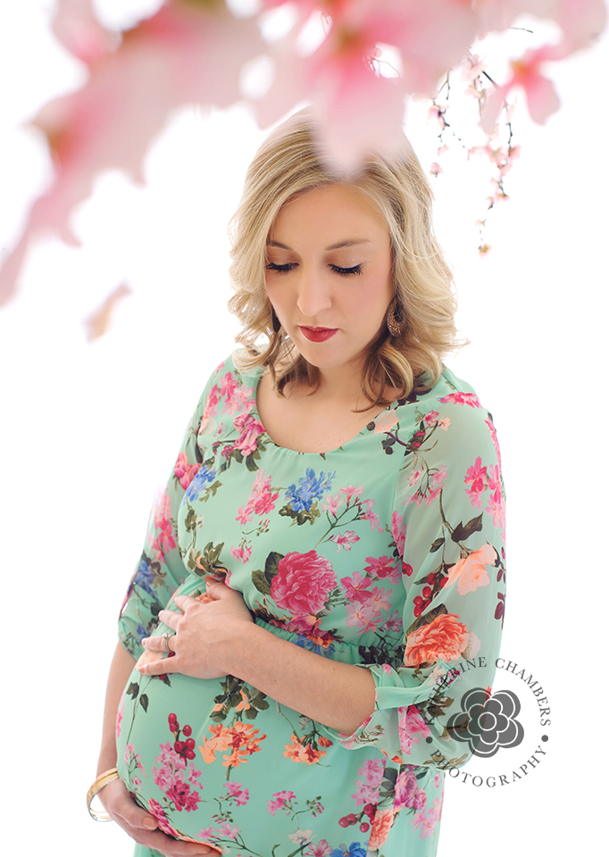 www.katherinechambers.com, Katherine Chambers Photography, Cleveland Maternity photographer (2)