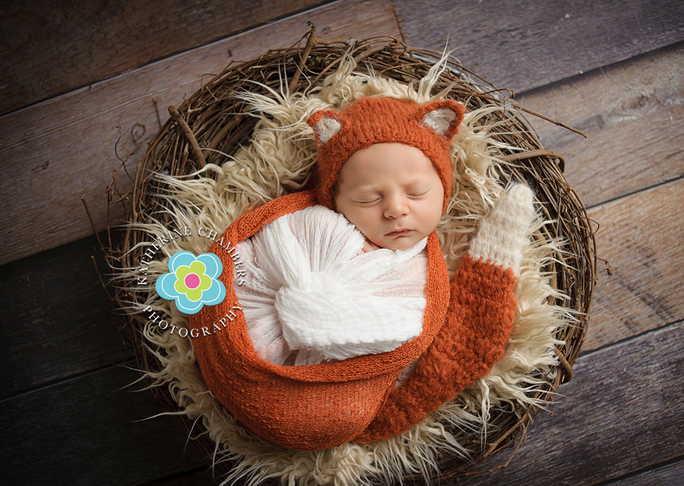 Cleveland Baby Photographer, Baby's First Year, Katherine Chambers Photography, www.katherinechambers.com (20)