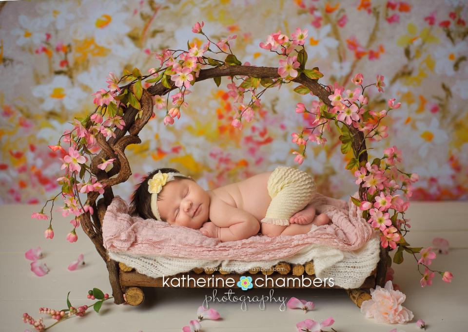 www.katherinechambers.com, Cleveland Newborn Photographer, Katherine Chambers Photography (11)