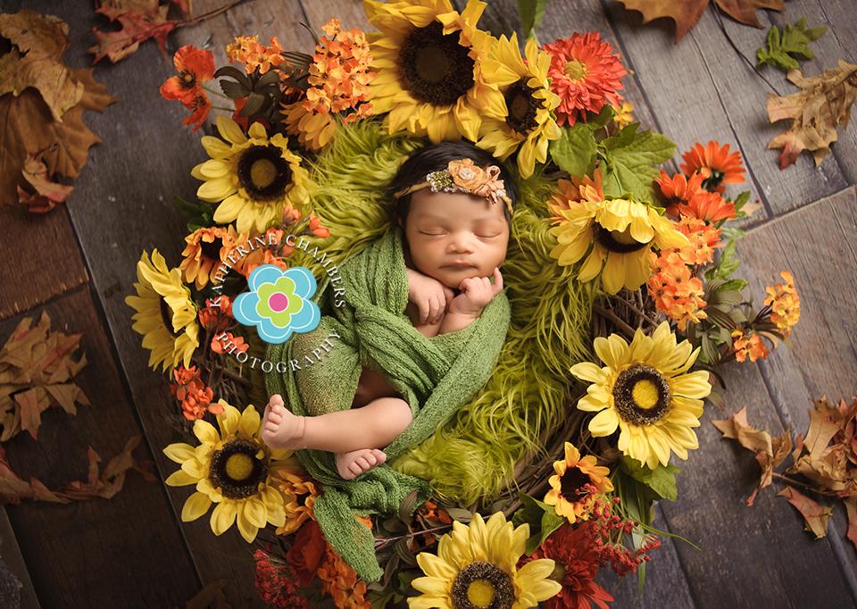 Cleveland Newborn Photographer, Katherine Chambers Photography, www.katherinechambers.com (7)