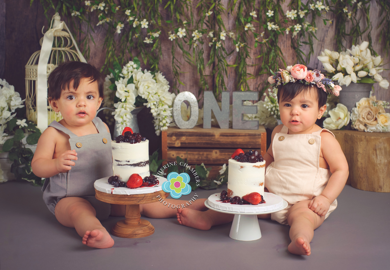www.katherinechambers.com, Twins cake smash, twins newborn session, Cleveland twins, Cleveland Cake Smash, Avon Ohio Baby Photography, Katherine Chambers Photography (4)