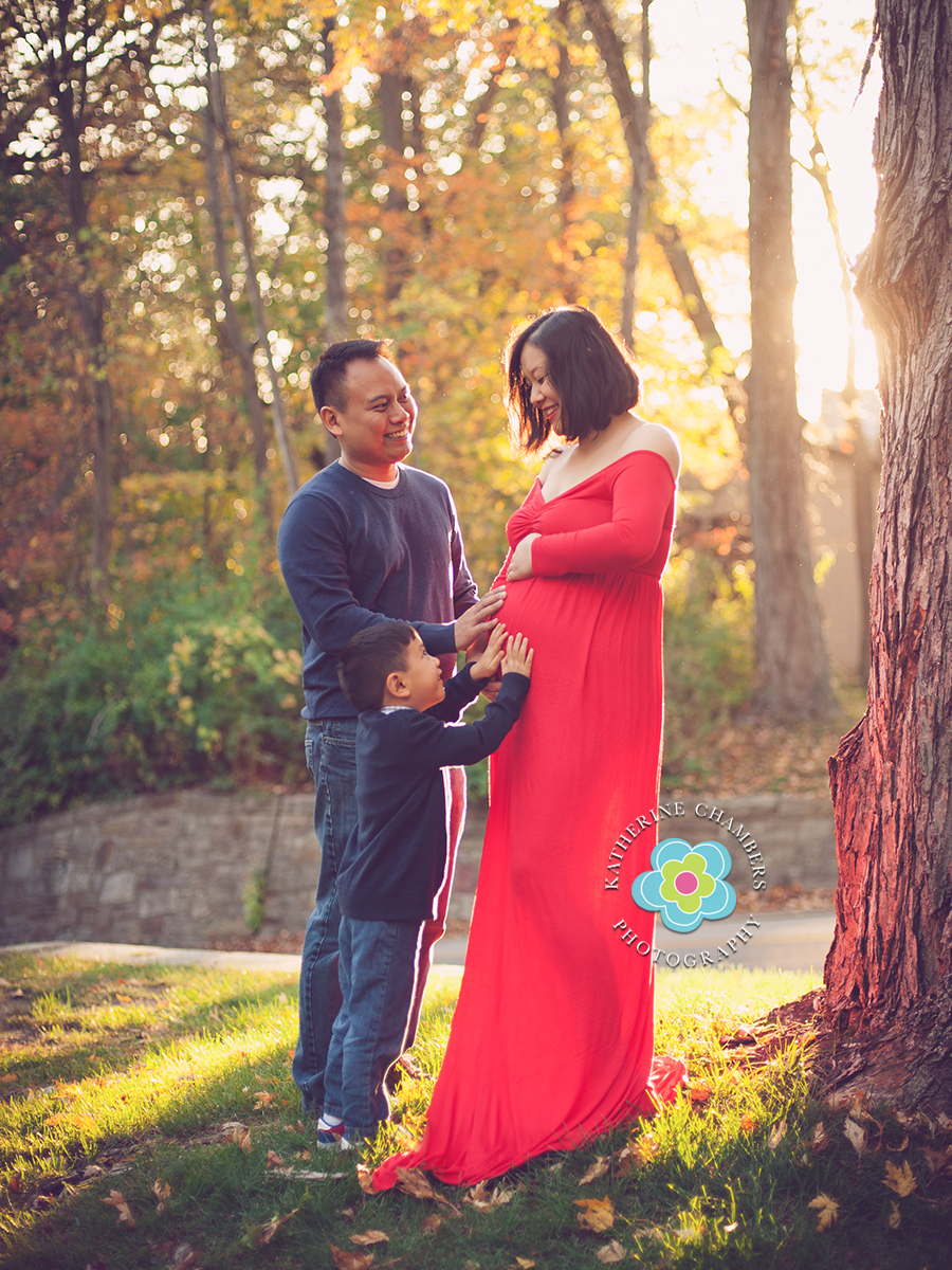 Cleveland, Ohio Maternity Photography, Cleveland Maternity photographer,