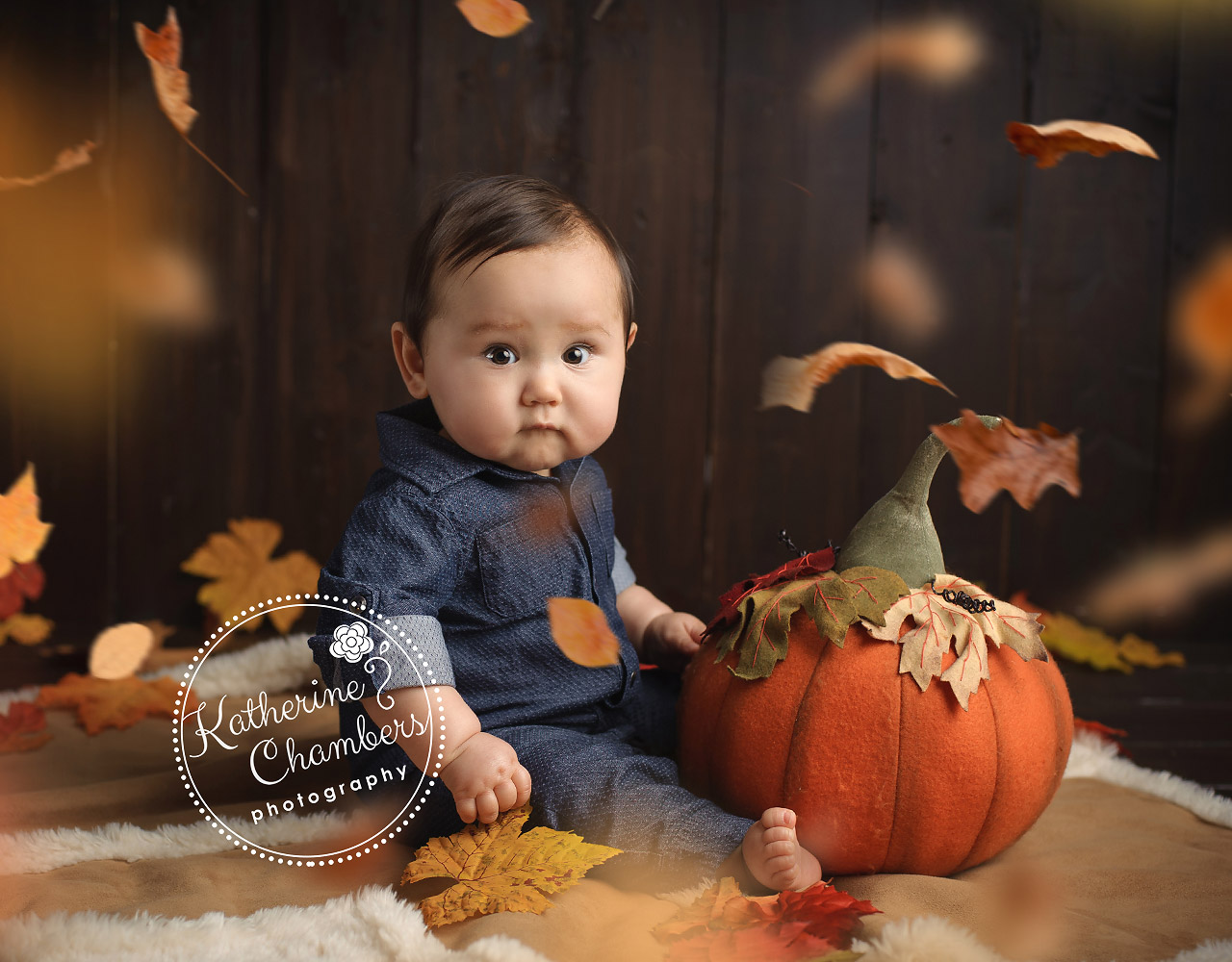 Cleveland Baby Photographer, Baby's First Year, North Ridgeville photography studio (6)