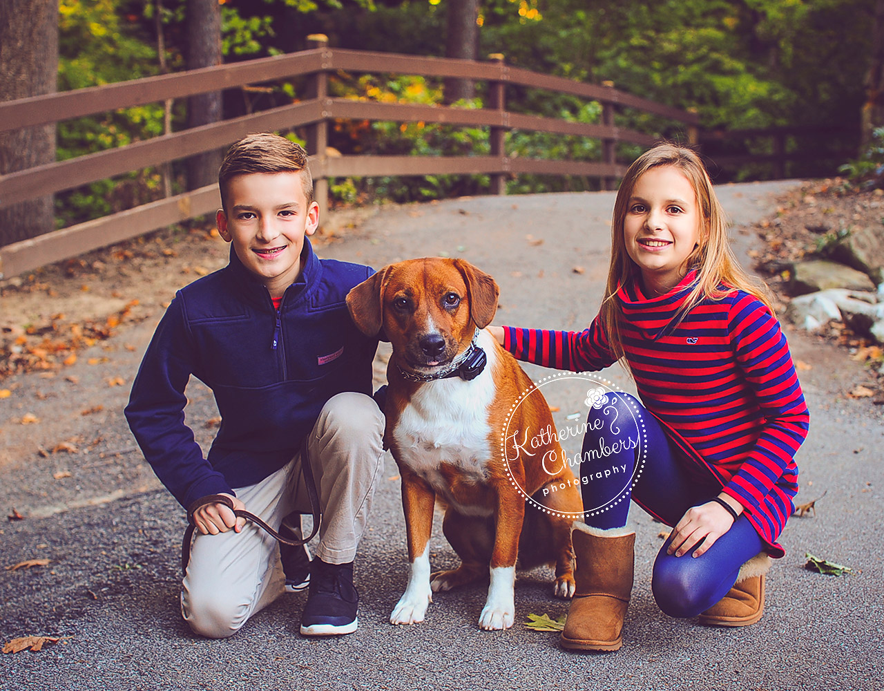 Kids with Dog, Family of 4, Siblings, Fall Family Photos