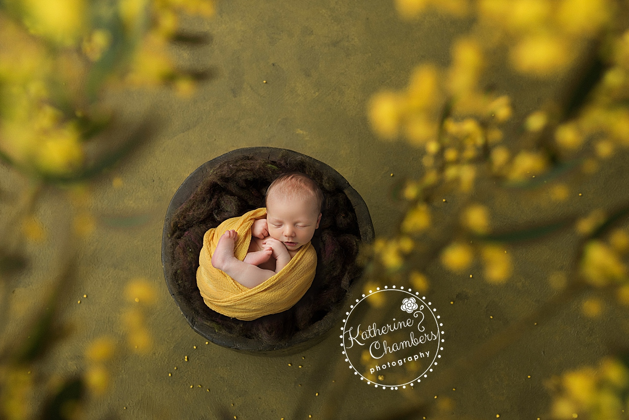 Creative Newborn Photographer, Cleveland Ohio Newborn Photographer, Spring time newborn photos