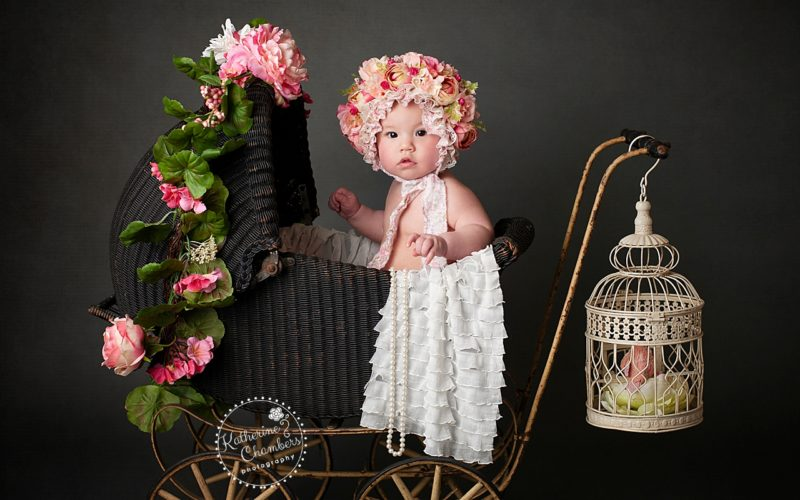 Professional Baby Photographer   Cleveland Baby Photographer