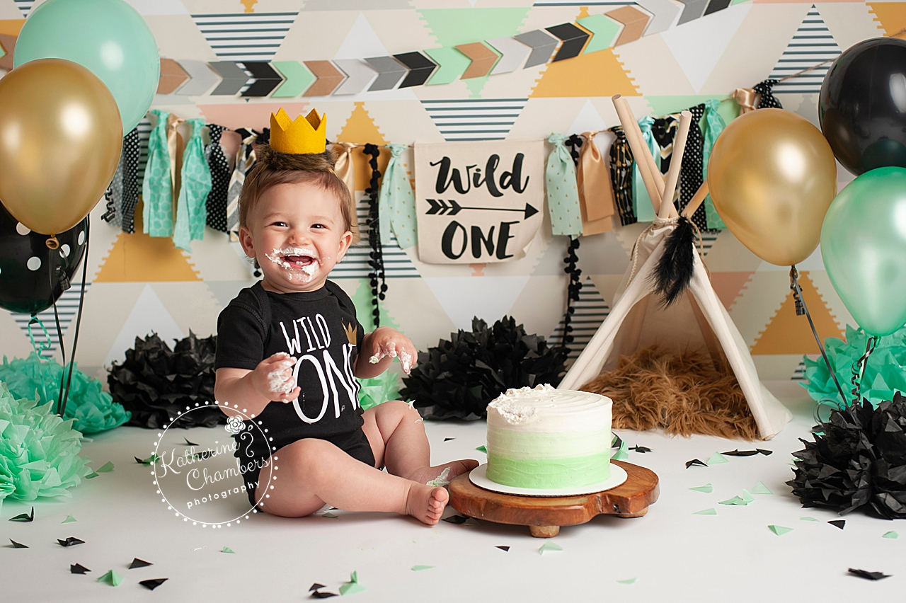 Brilliant Family Photographer Cleveland Wild One Cake Smash Cleveland Baby Funny Birthday Cards Online Barepcheapnameinfo