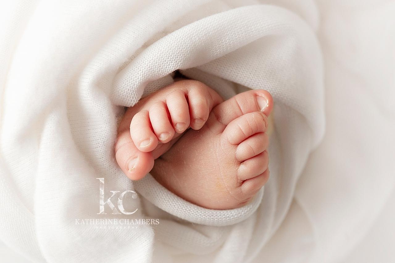 Macro Newborn Photos