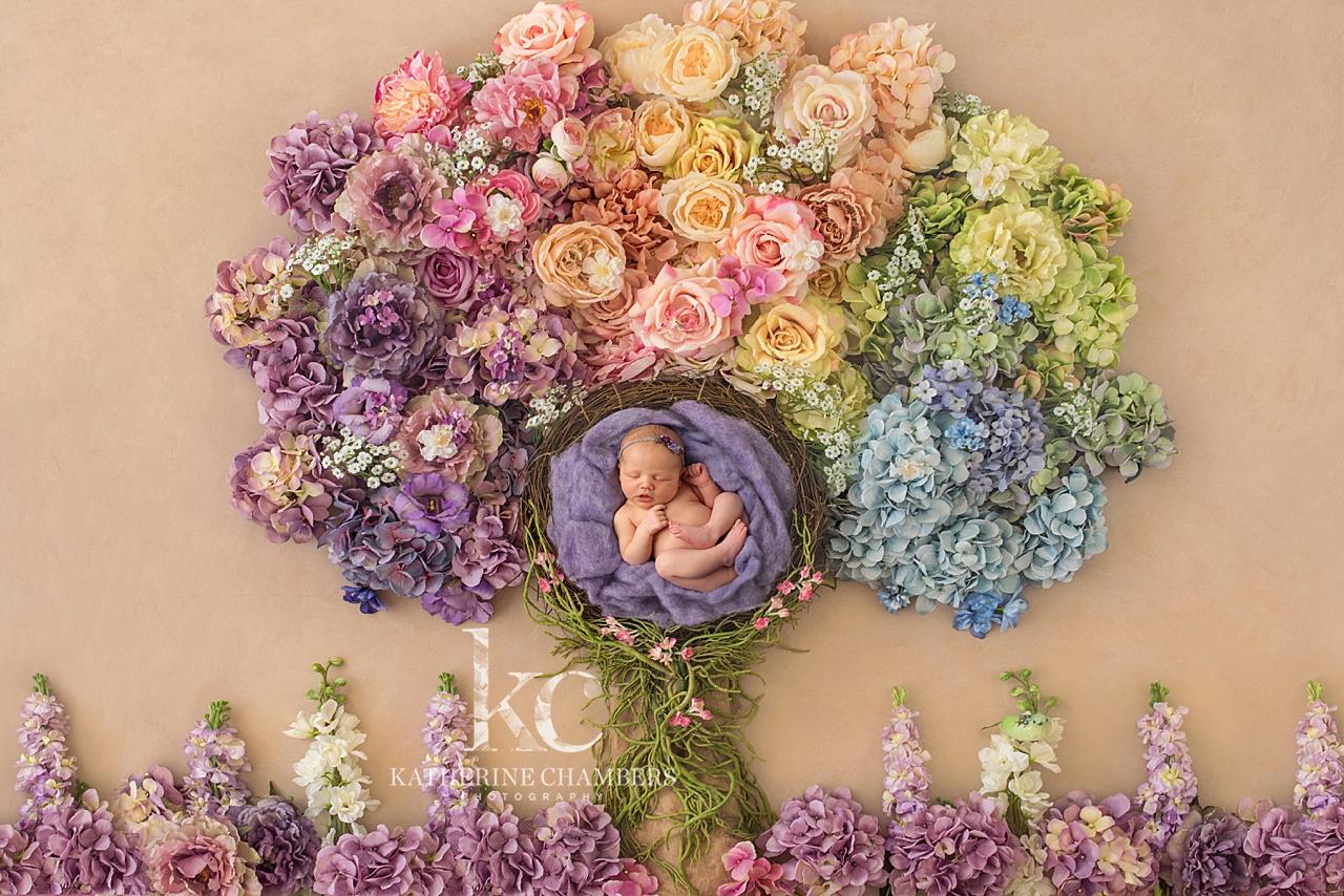 Flower Tree | Newborn Spring Photos