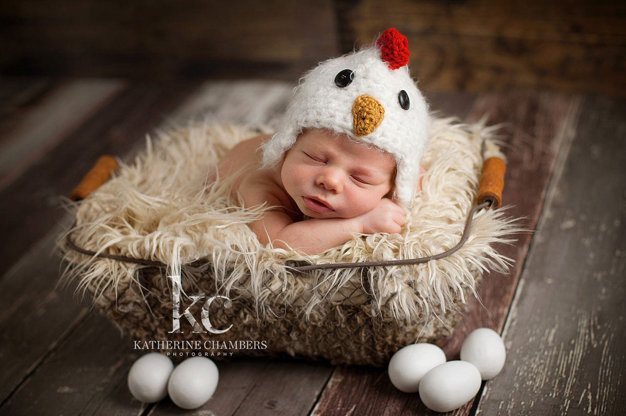 Baby Chick | Spring photos for newborns