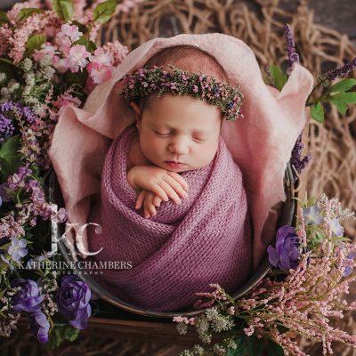 Cleveland Newborn Photographer   Floral Newborn