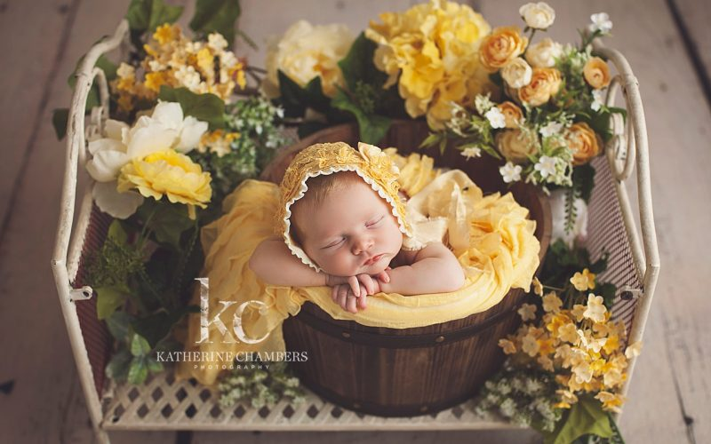 Floral Newborn Session