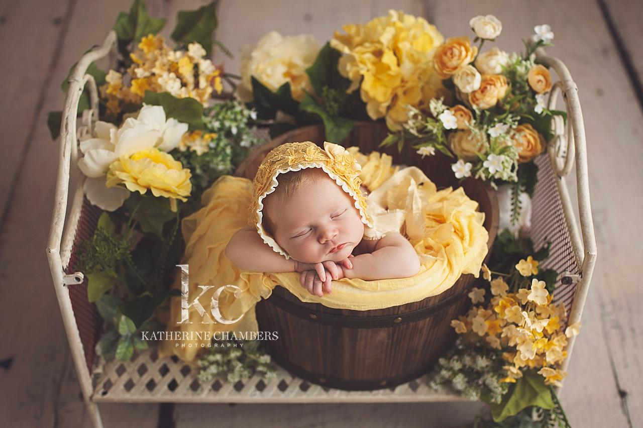 Floral Newborn Session