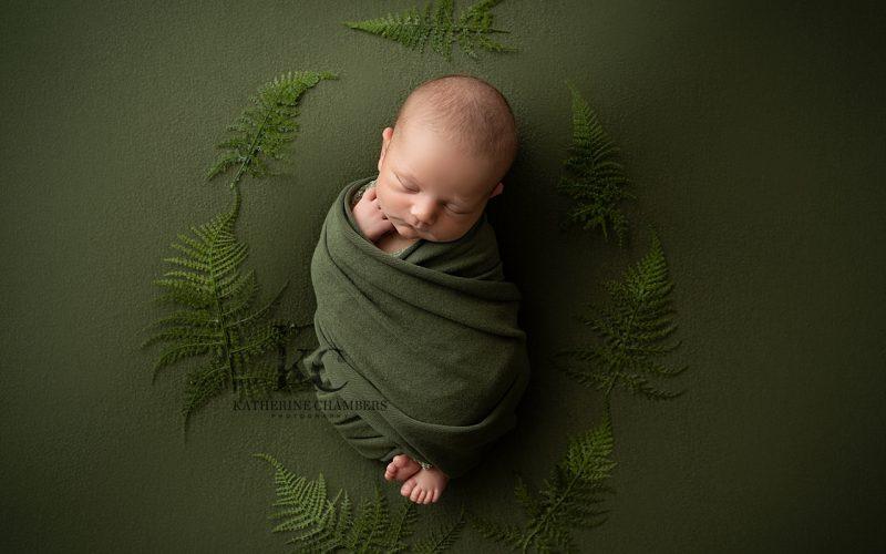 Avon Ohio Newborn Photographer